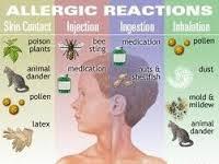 Obat Herbal alergi Cepat
